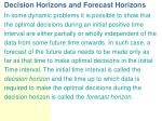 decision horizons and forecast horizons