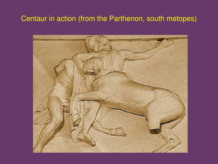 centaur in action from the parthenon south metopes n.