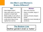 are men s and women s brains different