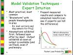 model validation techniques expert intuition