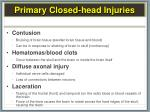 primary closed head injuries