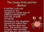 the young crab and her mother