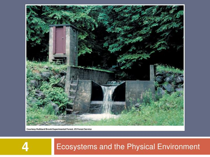 ecosystems and the physical environment n.
