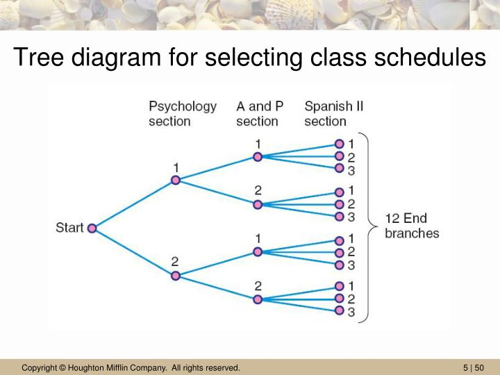 Tree diagram for selecting class schedules