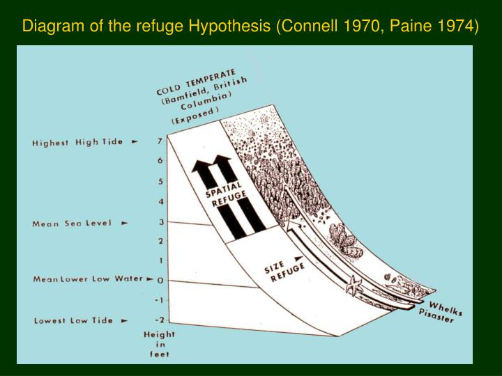 Diagram of the refuge Hypothesis (Connell 1970, Paine 1974)