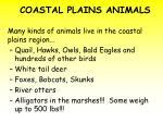 coastal plains animals