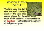 coastal plains plants