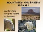 mountains and basins animals