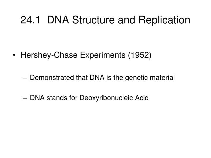 24 1 dna structure and replication n.