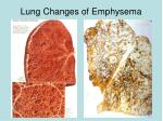 lung changes of emphysema