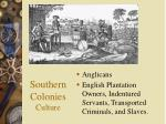southern colonies culture