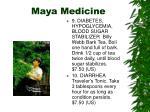 maya medicine1
