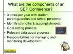 what are the components of an sep conference