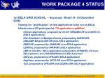 work package 4 status1