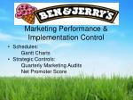 marketing performance implementation control