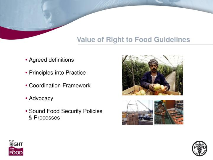 Value of Right to Food Guidelines