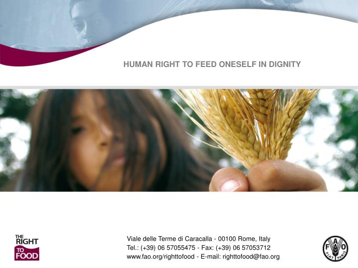HUMAN RIGHT TO FEED ONESELF IN DIGNITY