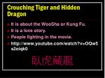 crouching tiger and h idden dragon