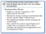 exchange rate changes and equilibrium output in an open economy11
