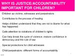 why is justice accountability important for children