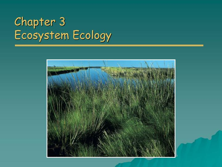 chapter 3 ecosystem ecology n.
