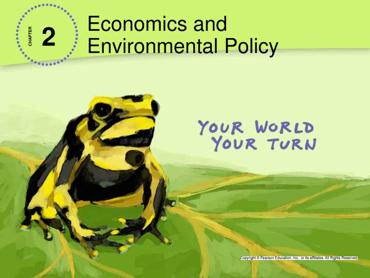 economics and environmental policy n.
