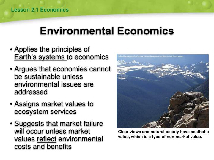 market failure in environmental economics