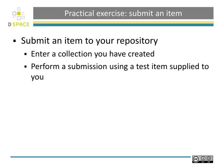 Practical exercise: submit an item