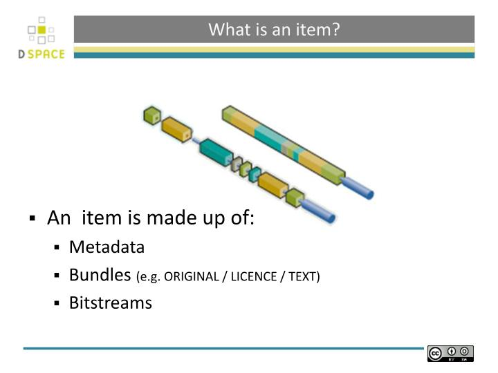 What is an item
