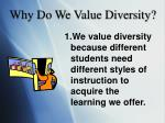 why do we value diversity
