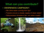 what can you contribute