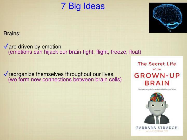 7 Big Ideas