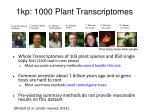 1kp 1000 plant t ranscriptomes