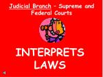 judicial branch supreme and federal courts