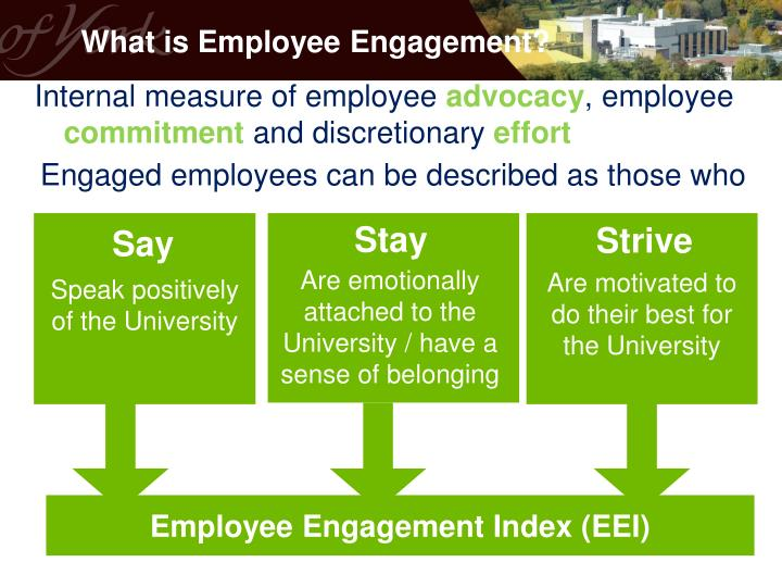 Employee Engagement Index (EEI)