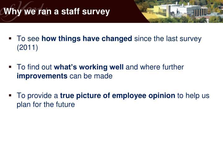 Why we ran a staff survey