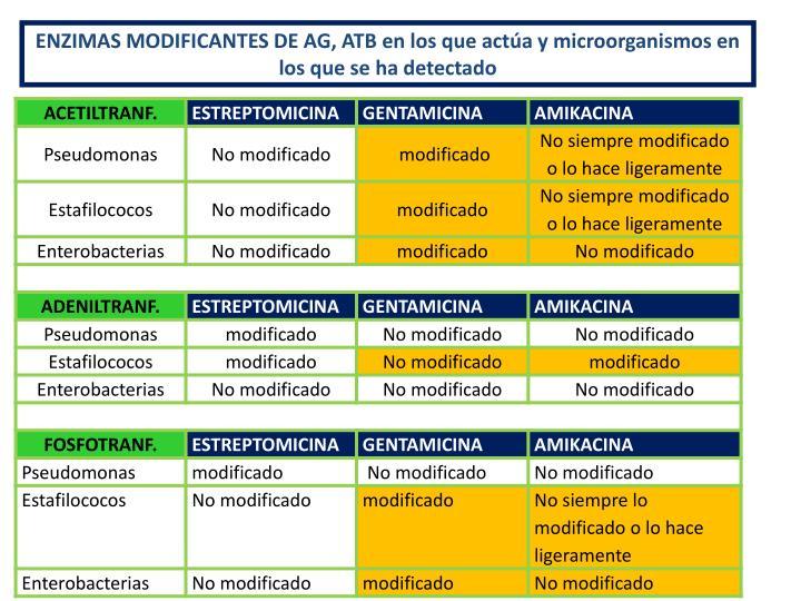 ENZIMAS MODIFICANTES DE AG, ATB en los que actúa y microorganismos en los que se ha detectado