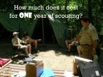 how much does it cost for one year of scouting