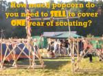 how much popcorn do you need to sell to cover one year of scouting