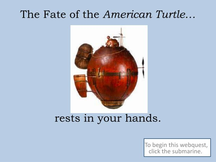 the fate of the american turtle rests in your hands n.