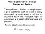 phase equilibrium for a single component system