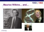 maurice wilkins and