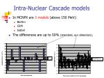 intra nuclear cascade models