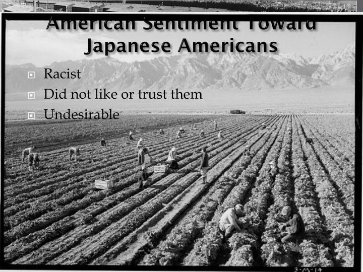 American sentiment toward japanese americans