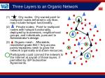 three layers to an organic network