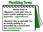 pluralizing terms part 2