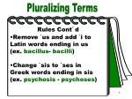 pluralizing terms part 4