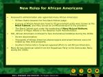 new roles for african americans