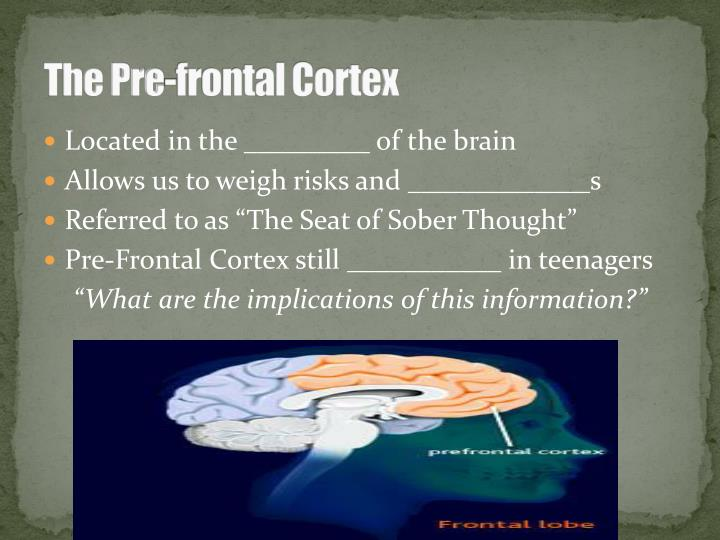 The Pre-frontal Cortex