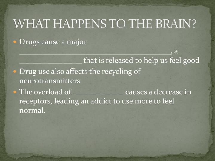 WHAT HAPPENS TO THE BRAIN?